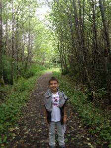 Scenic Nature Walk