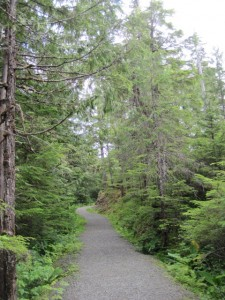 Nice Gravel Trail on the Ketchikan Rainforest Tour