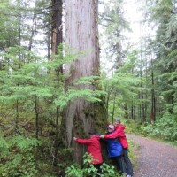 Tree Huggers on Ketchikan Rainforest Tour
