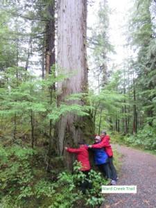 Tree Huggers on Ketchikan Rainforest Tour