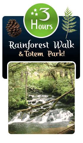 3 Hour Rainforest Walk and Totem Park Ketchikan Tour Wild Wolf Tours