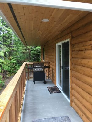 Cabin Deck and Gas Grill